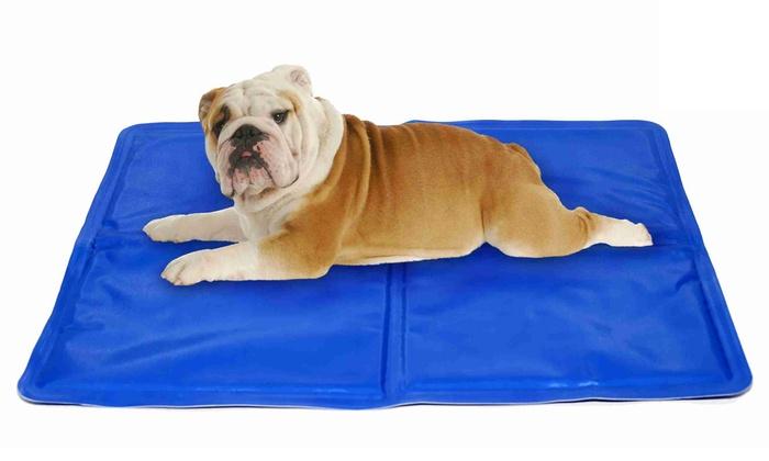 comparatif tapis rafraîchissant pour chien - 2020